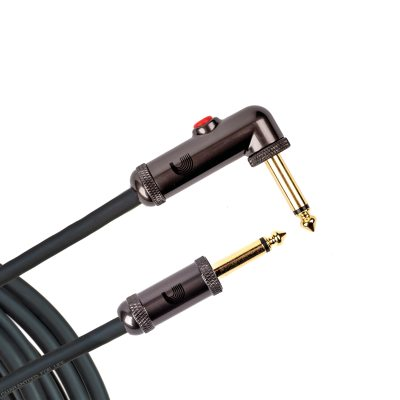 PW-AGLRA-10 i gruppen Kablar / Planet Waves / Instrument Cables / Custom Series hos Crafton Musik AB (370701937050)